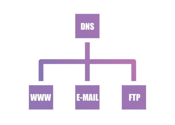 Como editar zonas de DNS no cPanel
